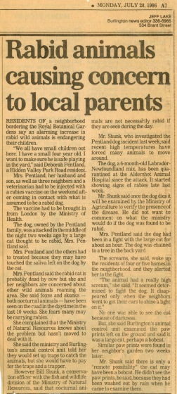 86.Jul.26 - Burlington · Eva Dusil (Article, Burlington News, Rabid Animals Causing Concern to Local Parents)