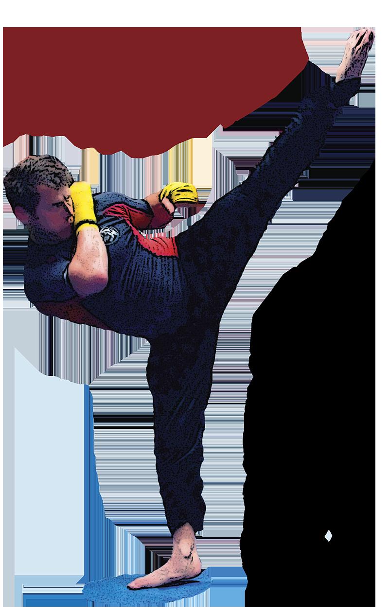 martial arts fighting science fighting zones gabriel dusil
