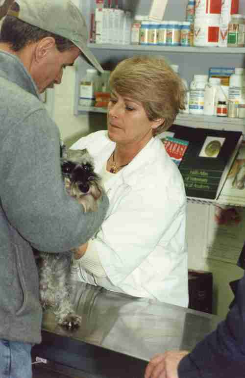 00 - Burlington · Eva Dusil (Veterinarian, (Aldershot Animal Hospital, examination)