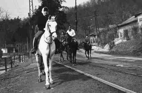 61 - Barca · Eva Kendeova (horses, train tracks)