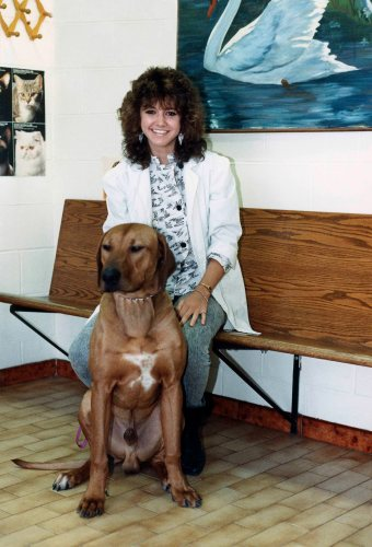 90 - Burlington · Heather Brown (Aldershot Animal Hospital waiting room with dog)