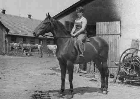 61.Jul - Barca · Eva Kendeova (horses, Jednotné rolnícke družstvo)