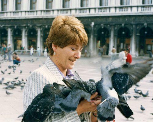 86 - Venice · Eva Dusil (pigeons)