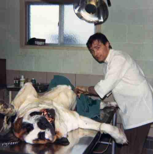 72 - Brampton · Vaclav Dusil (Veterinarian, surgery)