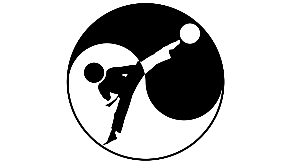 Martial Arts • Fighting Science • 18 • Yin ☯ Yang of Martial Arts vs. Combat